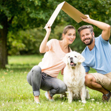 Top 10 Ideal Breeds Of Dogs For Life In Apartments